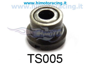 TS005-