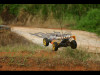 buggy_g004_101