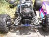 buggy_g013_24