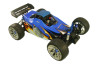 buggy_p001_09